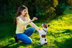 La femme forment son chien Jack Russell Terrier Photographie stock