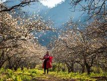 La femme heureuse de Hmong est dans le coucher du soleil, Moc Chau, Son La, images stock
