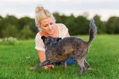 La femme joue avec un chien hybride de terrier sur un pré Images stock