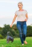 La femme joue avec un chien hybride de terrier sur un pré Photos libres de droits