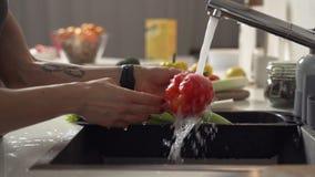 La femme lave des légumes dans la cuisine Plan rapproché Mouvement lent clips vidéos