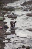 La femme lave des vêtements Photo libre de droits