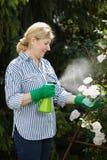 La femme mûre s'occupent de son jardin, l'eau de pulvérisation Photo libre de droits