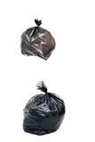 La femme maintiennent des déchets dans le sac pour pour éliminer Photo stock