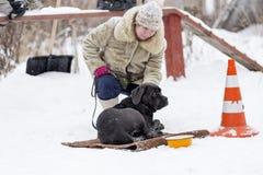 La femme marchant avec l'hiver de Corso de canne photo stock