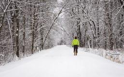 La femme marchant sur une neige a couvert les arbres du BT entourés par chemin Image libre de droits