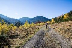 La femme marche en montagnes dans carpathien ukrainien Photographie stock