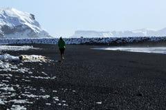 La femme marche le long de la plage noire de sable dans Vik, Islande Photo stock