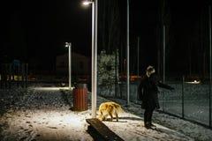 La femme marche la nuit avec le chien sur une laisse allumée par la lumière de Images stock