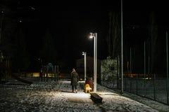 La femme marche la nuit avec le chien sur une laisse allumée par la lumière de Photographie stock