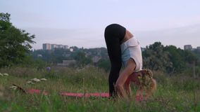 La femme mince exécute Asanas sur la clairière dans la forêt, font la gymnastique du yoga Surya Namaskar banque de vidéos