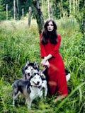 La femme mystérieuse dans la robe rouge avec l'arbre wolfs, forêt, portrait de mystère de chiens de chien de traîneau, personnes  Images stock
