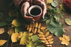 La femme obtiennent la chaleur avec le thé sur le fond d'automne images libres de droits