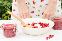 La femme prépare la confiture des groseilles rouges Image stock