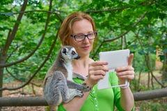 La femme prenant le selfie de photo avec l'anneau a coupé la queue le lémur photos stock
