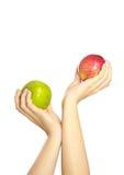 La femme remet des pommes de fixation image libre de droits