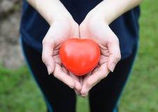 La femme remet tenir des soins de santé rouges de coeur, des personnes, des relations, la valentine et le concept d'amour images libres de droits