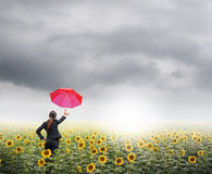La femme rouge d'affaires de parapluie se tenant en nuages de pluie au-dessus des tournesols mettent en place Photographie stock