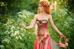 La femme rousse dans une robe rouge rassemble des fleurs Image stock