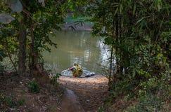 La femme rurale lave ses ustensiles dans un étang de village chez Bankura Photo stock