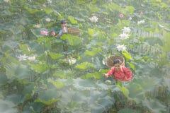 La femme sélectionnent Lotus Photo libre de droits