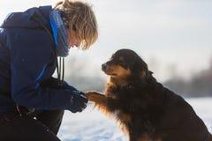 La femme s'inquiète de son chien avec la patte congelée Image stock