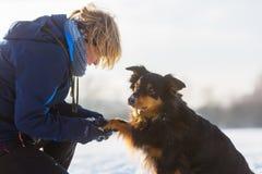 La femme s'inquiète de son chien avec la patte congelée Image libre de droits