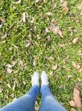 La femme se tenant dans l'herbe verte et sèchent des feuilles Images stock