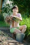 La femme sélectionne l'oignon Image libre de droits