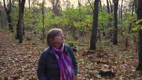 La femme supérieure passe son temps gratuit marchant par une forêt d'automne banque de vidéos