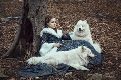 La femme sur la promenade d'hiver avec un chien Image libre de droits
