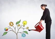 La femme tenant la boîte d'arrosage et dessin des graphiques de gestion sur l'usine s'embranche sur le mur images libres de droits