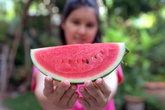 La femme tient un morceau de pastèque Chaque morceaux sont rouges, adoucissent, hydre, et gentil C'est les fruits populaires en é photographie stock