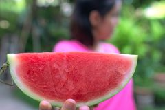 La femme tient un morceau de pastèque Chaque morceaux sont rouges, adoucissent, hydre, et gentil C'est les fruits populaires en é photos stock