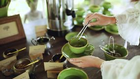 La femme tient une tasse verte de porcelaine de th? et met une feuille en bon ?tat dans elle banque de vidéos