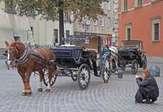La femme tirent le chariot de cheval à la place principale à Varsovie Images stock