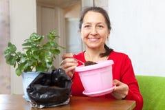 La femme travaille avec des pots de fleur Image libre de droits