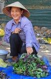 La femme vend des feuilles de basilic extérieures dans Vinh, Vietnam Photos stock