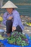 La femme vend des feuilles de basilic extérieures dans Vinh, Vietnam Image stock