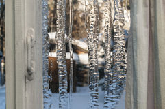 La fenêtre d'hiver Photos libres de droits