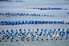 La ferme de mollusques et crustacés est faite en réservoir en plastique résiduel avec l'ONU de corde photo libre de droits