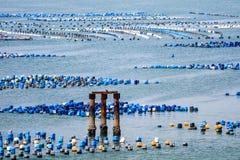 La ferme de mollusques et crustacés est faite en réservoir en plastique résiduel avec l'ONU de corde images libres de droits