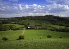 La ferme de pays a localisé le witin les frelds de Birmingham Image libre de droits