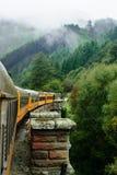 La ferrovia della gola di Taeri Fotografia Stock