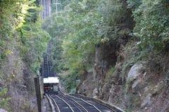 La ferrovia della pendenza della montagna dell'allerta a Chattanooga, Tennessee Fotografia Stock Libera da Diritti