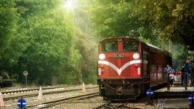 La ferrovia di Alishan, ha disegnato un periodo di alti e bassi delle storie di silvicoltura Dopo agitarsi, che cosa è accaduto è fotografia stock libera da diritti