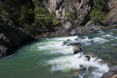 La ferrovia a scartamento ridotto da Durango a Silverton che passa Rocky Mountains dai Animas del fiume in Colorado U.S.A. Immagine Stock