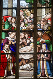 La Ferte-Bernard, stained glass Royalty Free Stock Photo