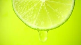 La fetta di calce, una goccia dell'acqua cade La frutta emana la freschezza ed il materiale da otturazione del succo Concetto di  video d archivio