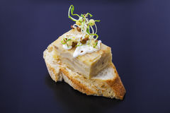 La fetta di pane con l'omelette spagnola e la lenticchia germoglia Immagine Stock